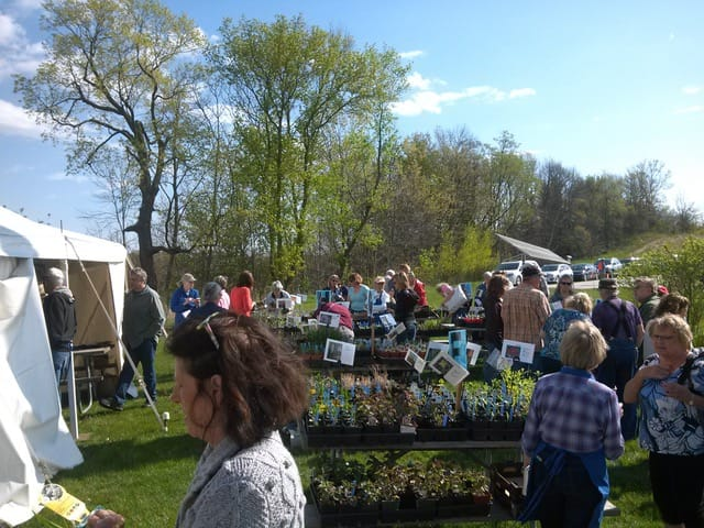 Thank You for Making the 30th Annual Wildflower and Perennial Sale a Big Success!