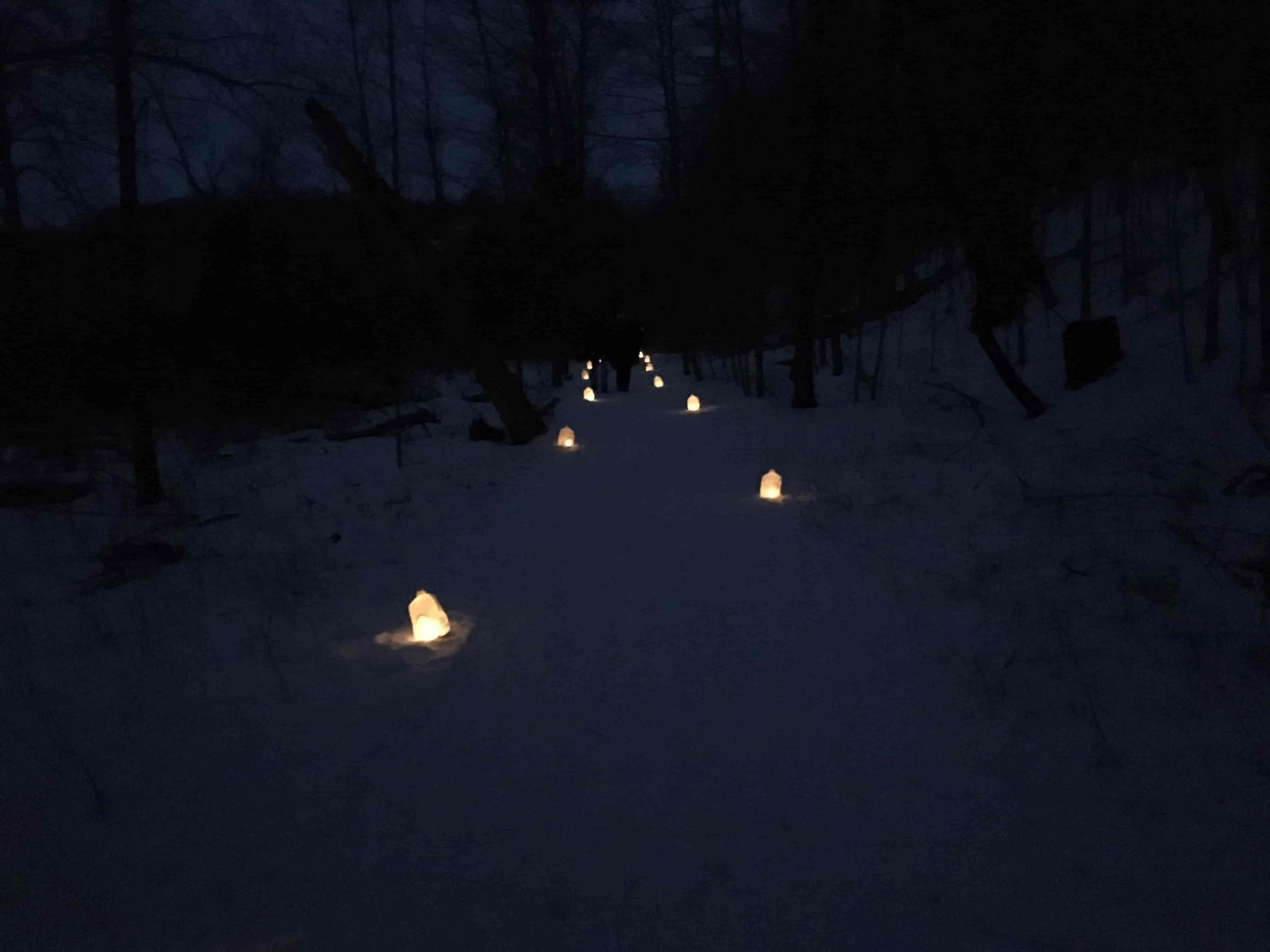 Winter Luminaries