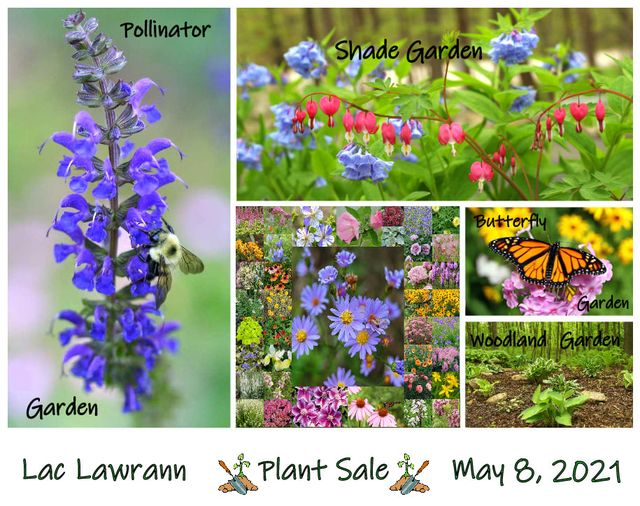 2021 Plant Sale – Save the Date!