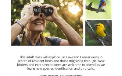 Program Spotlight: Birding at LLC