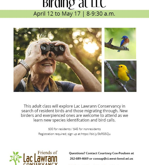 Program Spotlight: Birding at LLC